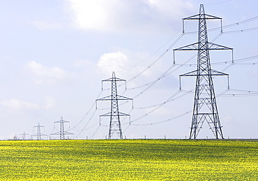 UK, Cambs, Burwell, Electricity pylons