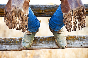 Cowboy boots on fence