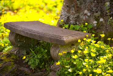 Stone bench, Marion county, Oregon