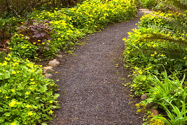 Garden path, Marion county, Oregon