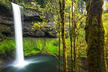 Silver falls, Marion county, Oregon