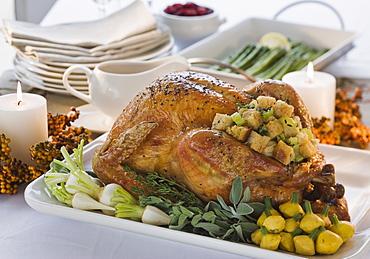 Thanksgiving dinner on table
