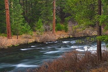 USA, Oregon, Deschutes County, River view, USA, Oregon, Deschutes County