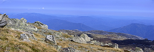View over park from highest peak, Australia, New South Wales
