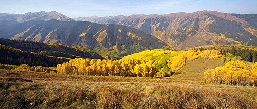 Mountain landscape with yellow aspen trees, Colorado, United States