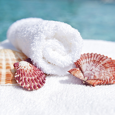 Spa towel and seashells