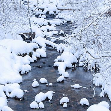 Snowy stream in winter