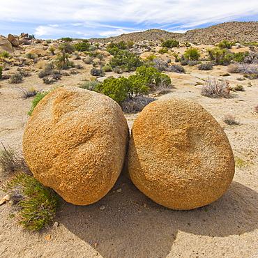 USA, California, Joshua Tree National Park, Boulders in desert, USA, California, Joshua Tree National Park
