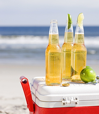 Beer and cooler on beach