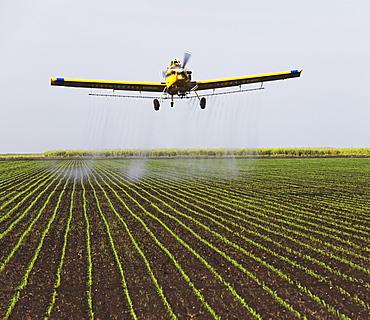 crop-duster plain over field