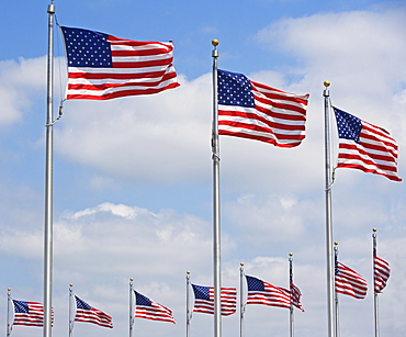 Low angle view of American flags, Washington DC, United States