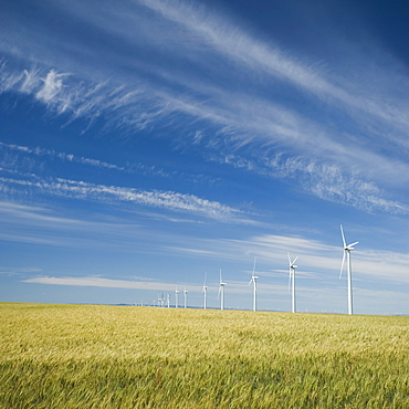Windmills in a row on wind farm