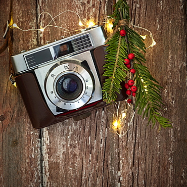 Vintage camera and mistletoe