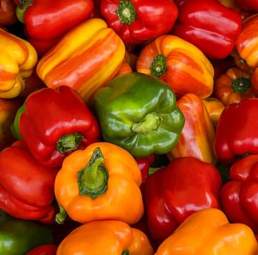 Overhead view of bell peppers