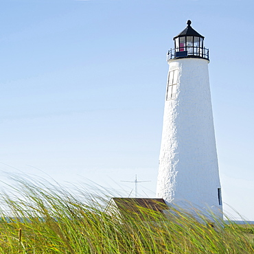 Great Point Lighthouse against clear sky with marram grass in foreground, Nantucket, Massachusetts, USA