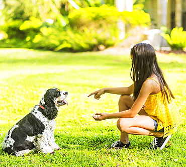 girl ( 8-9) teaching dog tricks