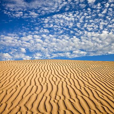 Wave pattern in desert sand