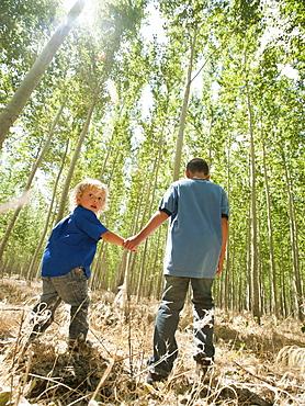 USA, Oregon, Boardman, Boys (8-9) walking between poplar trees in tree farm