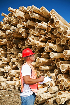 Engineer in front of stack of timber