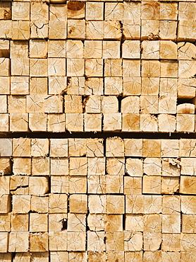 Full-frame shot of orderly timber stacks
