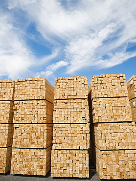Orderly stacks of timber