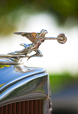 Hood ornament on classic car