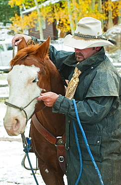 Man putting bridle on horse