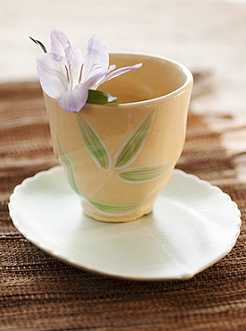 Tropical flower in tea cup
