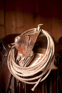 Close-up of saddle with rope