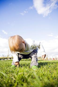 Baby boy (0-1 years) on grass