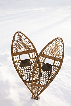 USA, New Jersey, Pair of snowshoe