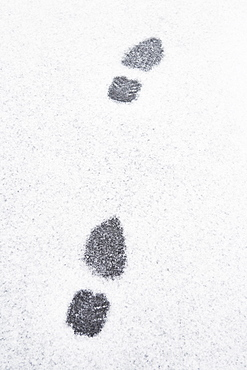 USA, New Jersey, Footprints in snow