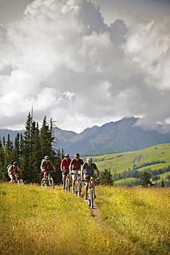 Men mountain biking on trail