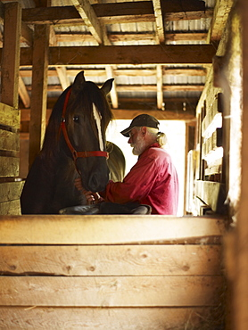 Man and horse in stable