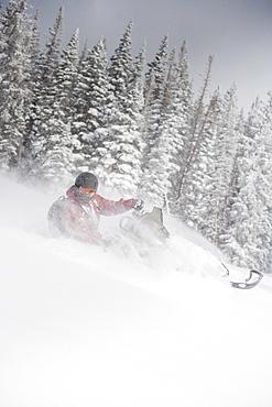 Man driving snowmobile Aspen, Colorado, USA
