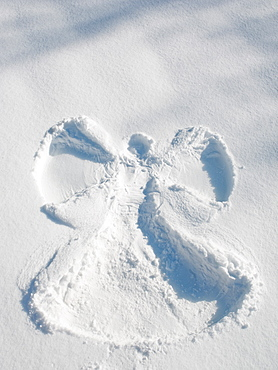 Snow angel shape