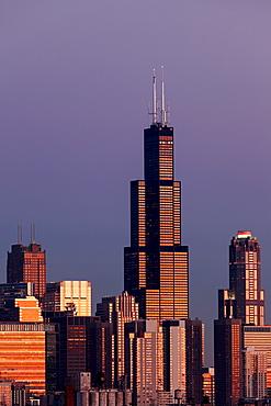 Gold Coast buildings in autumn, Chicago, Illinois