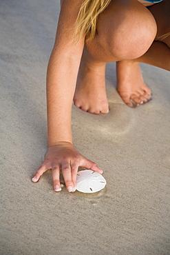 Girl picking up sand dollar, Florida, United States