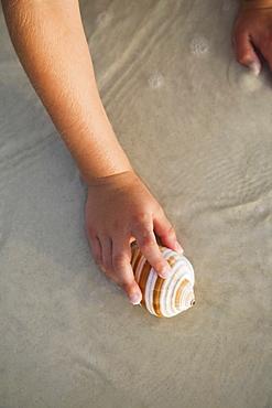 Girl picking up sea shell, Florida, United States