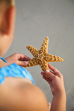 Girl holding starfish, Florida, United States