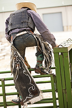Rodeo cowboy climbing on fence