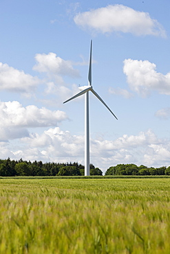 France, Picardy, Somme, Pont Remy, Wind turbine in field