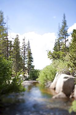 USA, California, Sonora Pass, Landscape with stream
