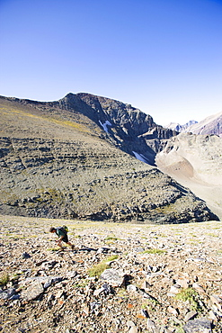 USA, Montana, Glacier National Park, Mid adult man hiking