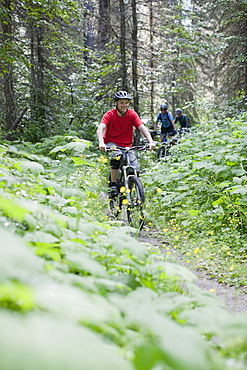 Canada, British Columbia, Fernie, Group of three people enjoying mountain biking
