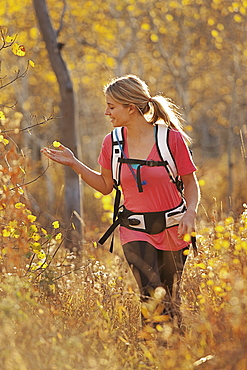 USA, Utah, young woman hiking in forest