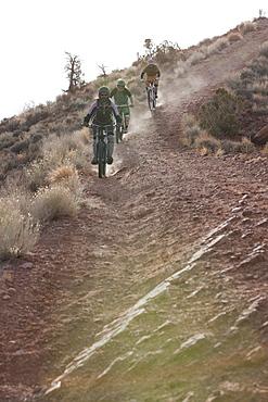Downhill mountain bikers