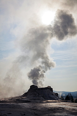Steam from Castle Geyser in Upper Geyser Basin, Yellowstone National Park, Wyoming