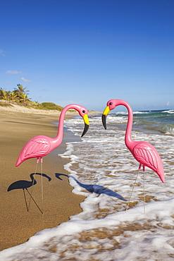 Two plastic flamingos, Isabel Beach, Puerto Rico