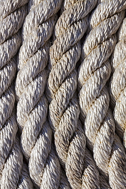 Close up of rope coiled on dock, Charleston Marina, OR